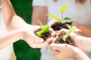 benefits of eco-friendly properties