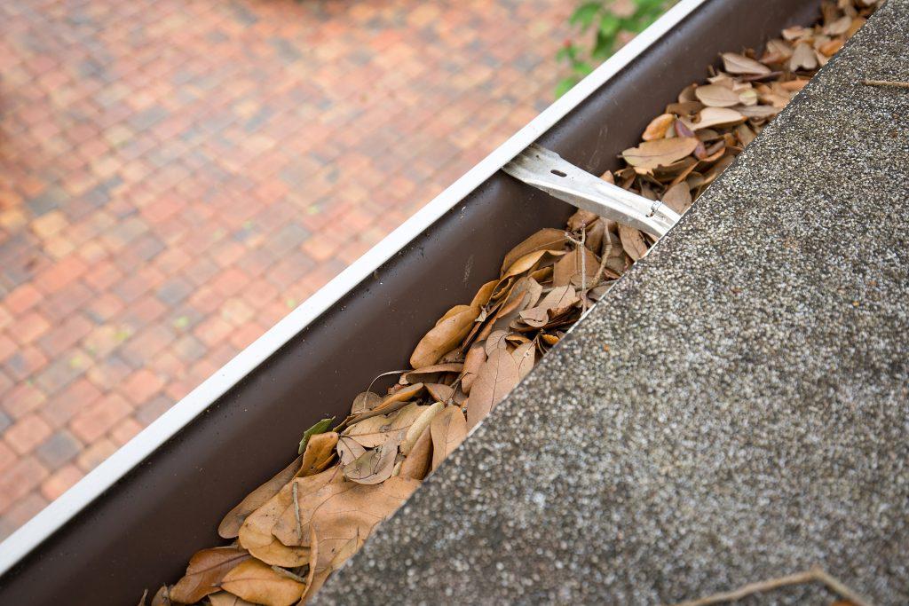 Rain Gutters Needing Property Mantainance
